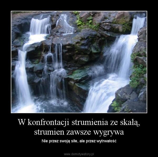 Wytrwali.pl - 10 najlepszych obrazków o wytrwałości, miejsce 4