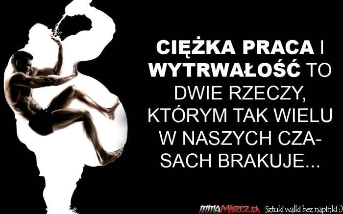 Wytrwali.pl - 10 najlepszych obrazków o wytrwałości, miejsce 8